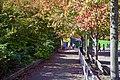 Autumn, Stanley Park Oct, 2015 - 21929212836.jpg