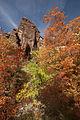Autumn Colors (6329141103).jpg