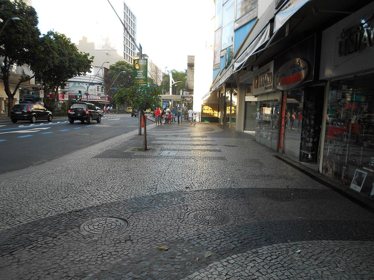 Avenida Ataulfo de Paiva.jpg