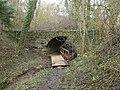 Bad Wimpfen Alte Brücke im Wald Jan 2014.JPG
