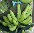 Bananas. Costa Rica.jpg