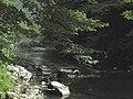 Banat, Nera Canyon - panoramio (33).jpg