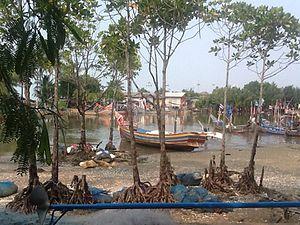 Nong Chik District - Bangtawa in 2015.