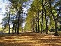 Barking Park - geograph.org.uk - 600864.jpg