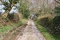 Barley Mow Lane (2) - geograph.org.uk - 1251819.jpg