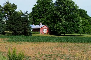 Red Man - Barn painted with Red Man advertisement, Macon Township, Michigan