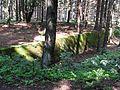 Bartošovice v Orlických horách, protitankový příkop u R-S 63 (rok 2010; 02).jpg