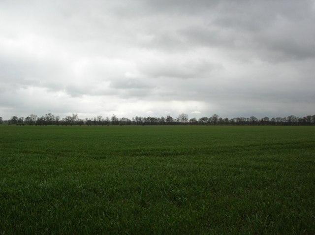 Mutmaßliches Schlachtfeld bei Myton (2007)