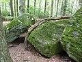 Bayerischer Wald Lusen Findlinge.jpg