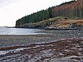 Beach at Loch Bharcasaig - geograph.org.uk - 1733675.jpg