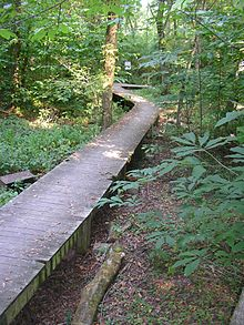 Beargrass Creek State Nature Preserve Parking Area