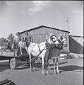 Beit Zera 1950 in the early 50s farm workers.jpg