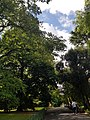 Belfast Botanic Gardens 20180914 134827 (49825291053).jpg