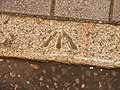 Bench Mark - geograph.org.uk - 653325.jpg