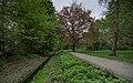 Berlin Bäkepark Steglitz asv2021-05 img1.jpg