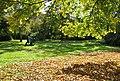 Berlin Gesundbrunnen Park Herbst.jpg
