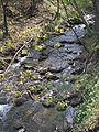 Biała River11.JPG