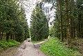 Bielefeld - 2015-05-08 - BI-003 Östlicher Teutoburger Wald.jpg