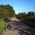 Biggin Lane towards Ramsey - geograph.org.uk - 535779.jpg