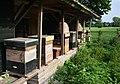 Bijenkast.jpg
