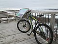 Biking the PEI National park (31102594134).jpg