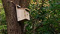Bird box, Minnowburn near Belfast - geograph.org.uk - 1535216.jpg