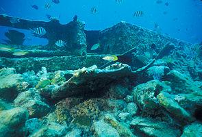 Biscayne National Park H-alicia wreck.jpg