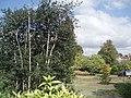 Bishops Palace Garden - geograph.org.uk - 1484594.jpg