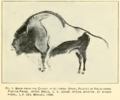 Bisonte Altamira. Smithsonian 1909.png