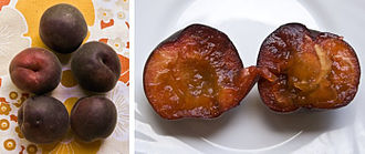 Prunus × dasycarpa - Image: Black apricot