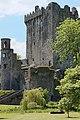 Blarney Castle, Blarney (506699) (28326385142).jpg
