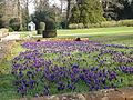 Blickling Hall Gardens.JPG