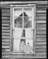 Bobbie Jean Sergent looking out the kitchen window. P V & K Coal Company, Clover Gap Mine, Lejunior, Harlan County... - NARA - 541370.tif