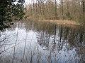 Bodengeopfad Rehagen - panoramio (1).jpg