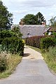 Border hedge and verge on path to house.jpg