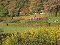 Botanisk Have i Aarhus (oktober).jpg
