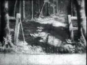 File:Boxer dog footage, 1901.ogv