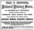 Brewster NaturalHistoryStore TremontSt BostonDirectory 1861.png