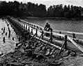 Bridge-to-Tarvo-1956.jpg