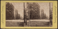 Broadway south from Broome Street, New York City, from Robert N. Dennis collection of stereoscopic views.png