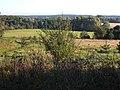Bug river valley - panoramio.jpg