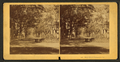 Bull Street, Savannah, Ga, from Robert N. Dennis collection of stereoscopic views.png