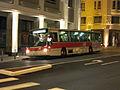 Bus Paseo Stab Biarritz face.JPG