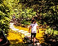 Butchart Gardens - Victoria, British Columbia, Canada (28718737523).jpg