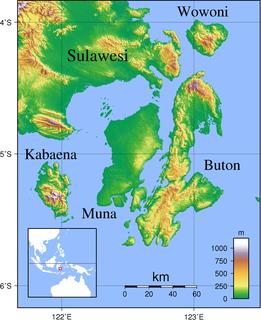 Wawonii Island
