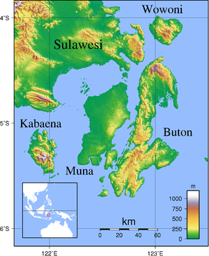 Topographic map of Buton and other nearby Isla...
