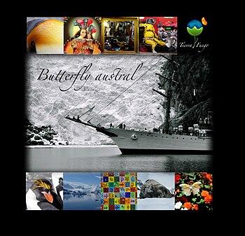 Butterfly austral Jpeg.jpg