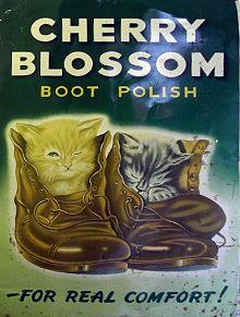 Kiwi Leather Shoe Cream Navy Blue