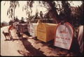 CLUSTERED MAILBOXES HELP THE MAILMAN WHOSE ROUTE TAKES HIM TO THE MALIBU LAKE AREA IN THE SANTA MONICA MOUNTAINS NEAR... - NARA - 557566.tif