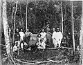 COLLECTIE TROPENMUSEUM Tabaksplanters op olifantenjacht Sumatra TMnr 60001893.jpg